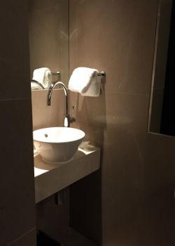 "The ""airplane bathroom"" sink"