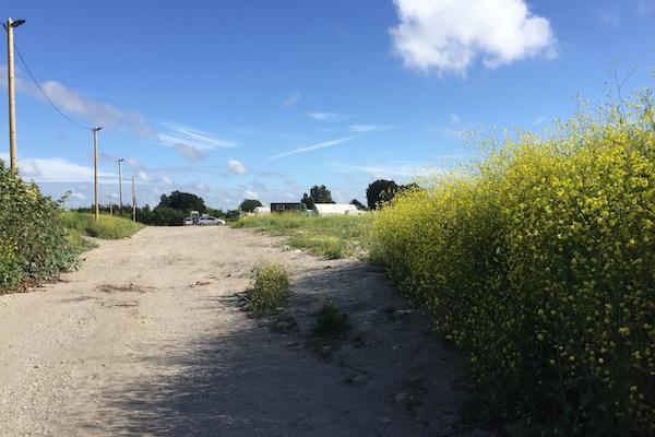 Calais Jungle Refugee Camp Brush
