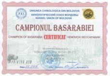 молдова 002-min
