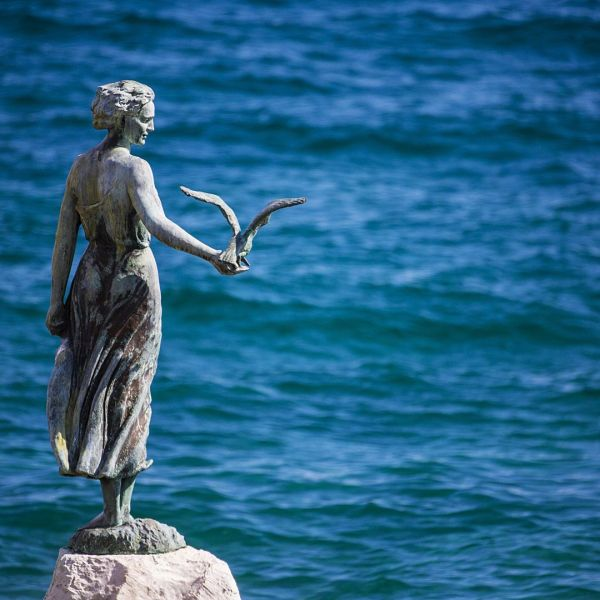 croatia-Opatija-seagull-Pointers-Travel