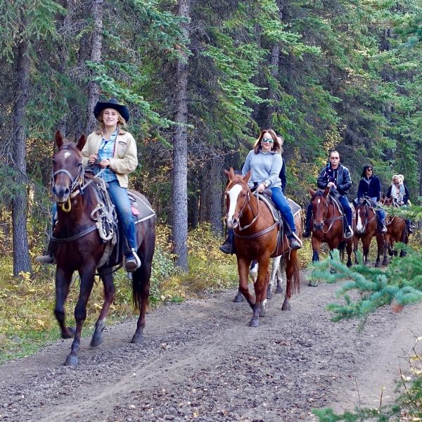 horseback-riding-pointers-travel