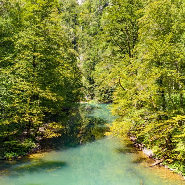 Retreat to National Park Risnjak