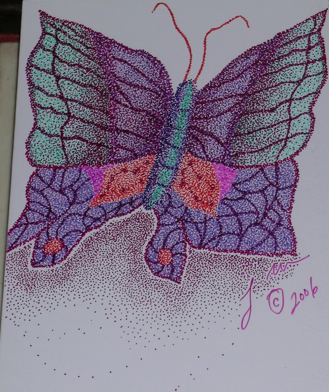 abutterfly2