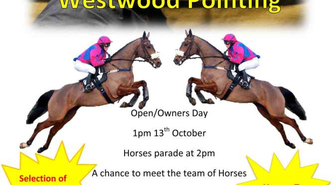 Westwood Pointing Open Day – 13th October