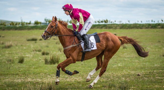 Entries: Exmoor Point-To-Point, Bratton Down, Sunday, 22nd May 2016