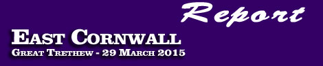 REPORT ON THEEAST CORNWALL POINT-TO-POINT ATGREAT TRETHEWSUNDAY29thMARCH 2015