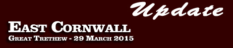 Going Update: East Cornwall (2) Point-To-Point, Great Trethew, 29th March 2015