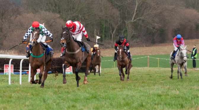 REPORT ON THE TIVERTON POINT-TO-POINT AT CHIPLEY PARK, SUNDAY 24TH JANUARY