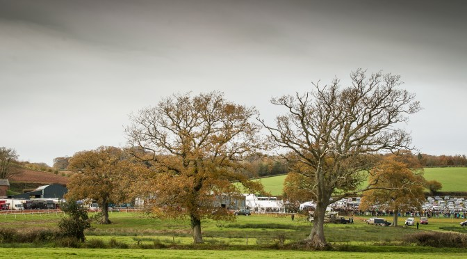 RESULTS: BISHOPS COURT RACING CLUB POINT-TO-POINT AT OTTERY ST MARY 19TH NOVEMBER 2017
