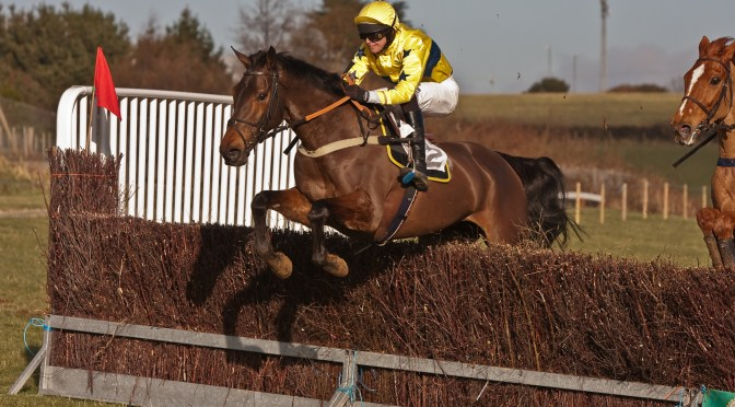 Rescheduled: Preview: Western Point-to-Point, Royal Cornwall Showground, Wadebridge – Sunday 16th February 2019