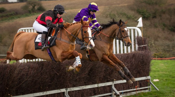 Entries: North Cornwall Point-To-Point, Wadebridge, Sunday 13th January 2019