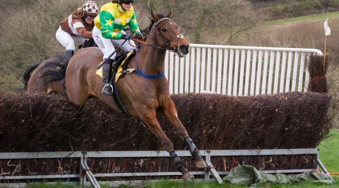 GRANVILLE'S BETTING GOSSIP : NORTH CORNWALL POINT-TO-POINT AT WADEBRIDGE, SUNDAY 13TH JANUARY 2019