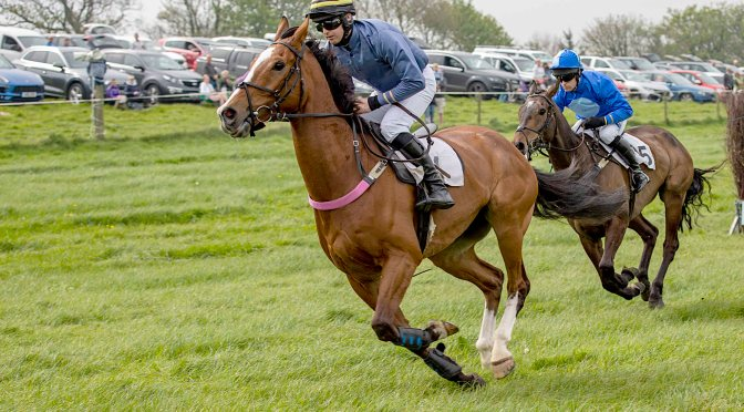 ENTRIES: FOUR BURROW  POINT-TO-POINT AT TREBUDANNON  ON SAT 24TH APRIL 2021