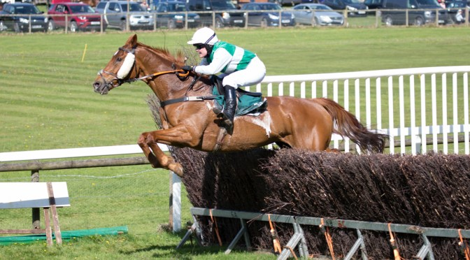 REPORT DARTMOOR AT FLETE PARK 20 APRIL 2019
