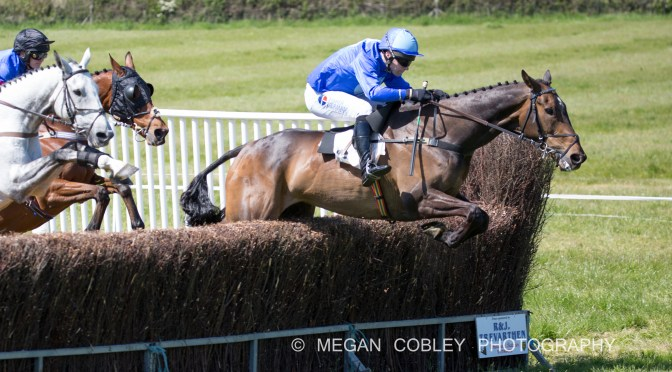 REPORT: FOUR BURROW POINT-TO-POINT AT TREBUDANNON 12TH MAY 2019