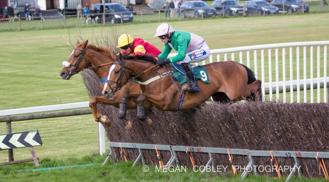 Report: Modbury Harriers and Totnes & Bridgetown Race Co. Ltd Point-To-Point, Saturday 4th May 2019