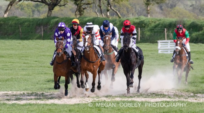 RESULTS: STEVENSTONE POINT-TO-POINT AT VAUTERHILL 6TH MAY 2019