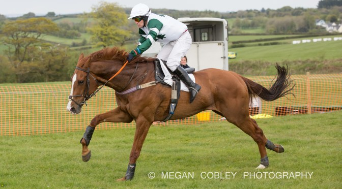 REPORT: STEVENSTONE POINT-TO-POINT AT VAUTERHILL 6TH MAY 2019