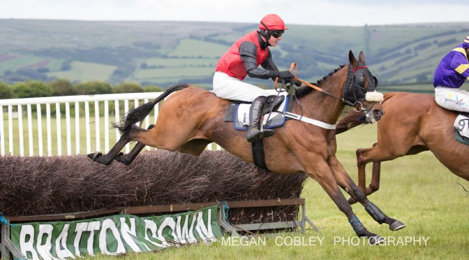 GRANVILLE'S BETTING GOSSIP – TIVERTON STAGHOUNDS POINT-TO-POINT, SUNDAY 9TH JUNE 2019