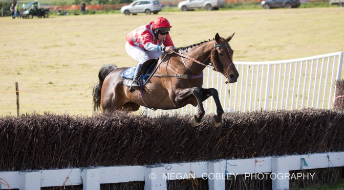 RESULTS: TORRINGTON FARMERS POINT-TO-POINT AND DEVON & CORNWALL PONY RACING FINALS – CHAPLETON BARTON, UMBERLEIGH – 15th JUNE 2019