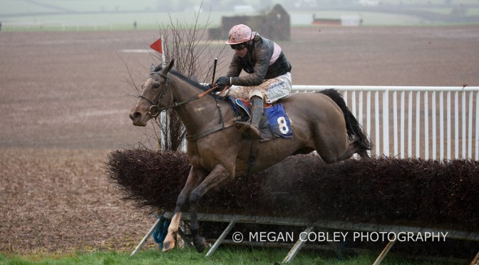 REPORT: TIVERTON  POINT-TO-POINT AT CHIPLEY PARK ON SUNDAY 26TH JANUARY 2020
