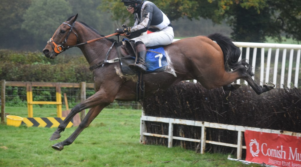 Red Indian, ridden by Alice Stevens wins at Ottery