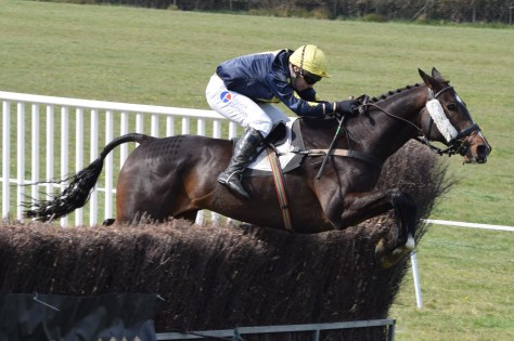 Four Burrow Point-To-Point Maiden (Division 1)Race winner Party Tunes, ridden by Darren Edwards