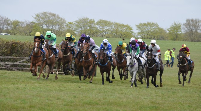 PREVIEW: South Tetcott POINT-TO-POINT AT Upcott Cross ON BANK Monday, 31st May 2021