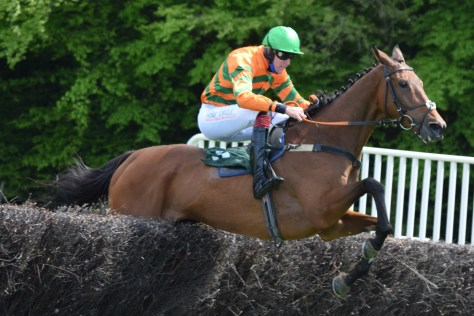 Conditions winner Definite Dilemma, ridden by Conor Houlihan