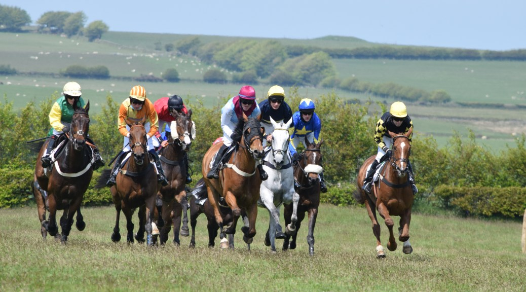 Jockeys and their mounts in the Restricted race