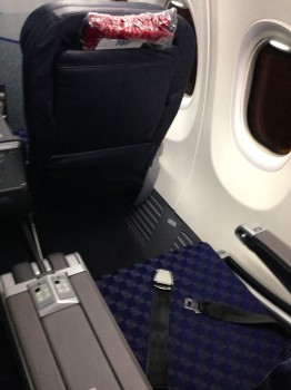 AA 737-800 Sky Interior04