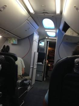 AA 737-800 Sky Interior07