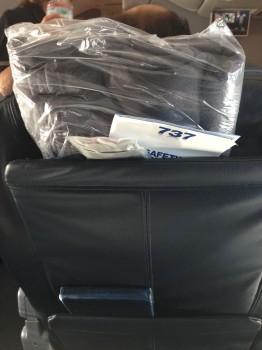 AA 737-800 Sky Interior27