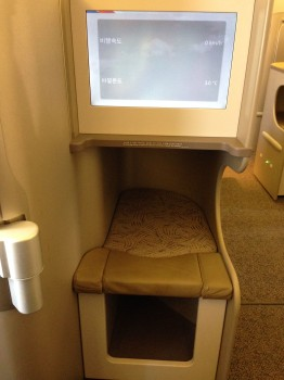 Asiana Airlines Trip Report Business Class ICN-JFK B777-300ER08