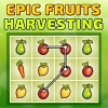 Epic Fruit Harvesting