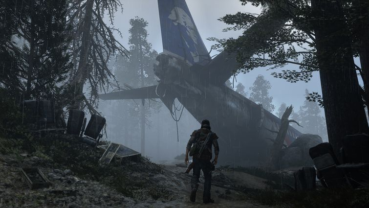 days gone screens
