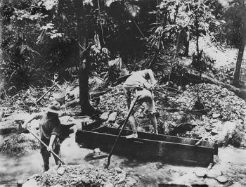 StateLibQld 1 160661 Tin mining in the Bloomfield River district ca. 1884