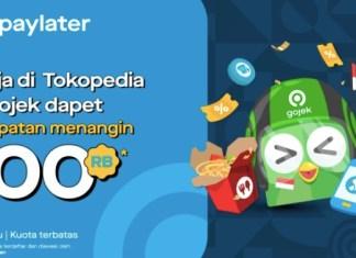 GoPayLater SKS 2