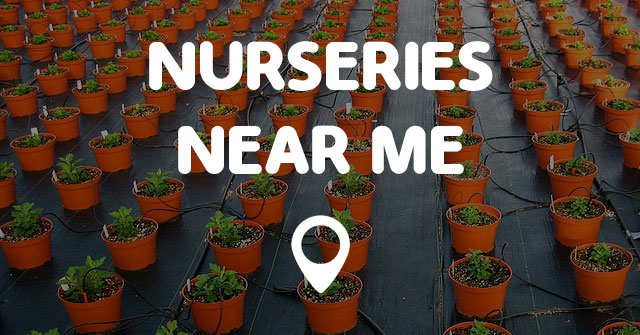NURSERIES NEAR ME - Points Near Me on Backyard Landscaping Near Me id=65192