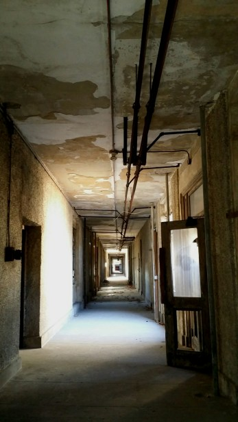 """The """"Spine"""" Main Corridor Leading to the Wings"""