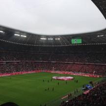 FC Bayern v Hannover 96