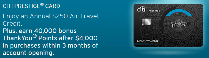 premium credit card annual travel credit