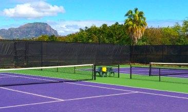 4 USTA Tennis Courts