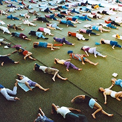 Feldenkrais Training