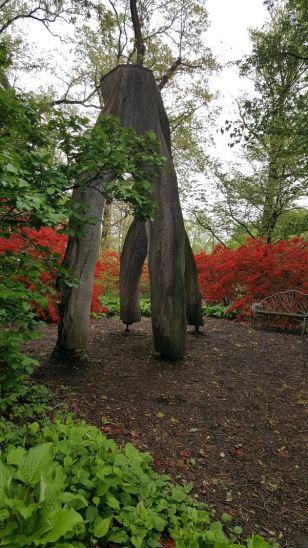Botanicals - Upside down tree