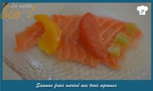 La recette bio_saumon frais mariné