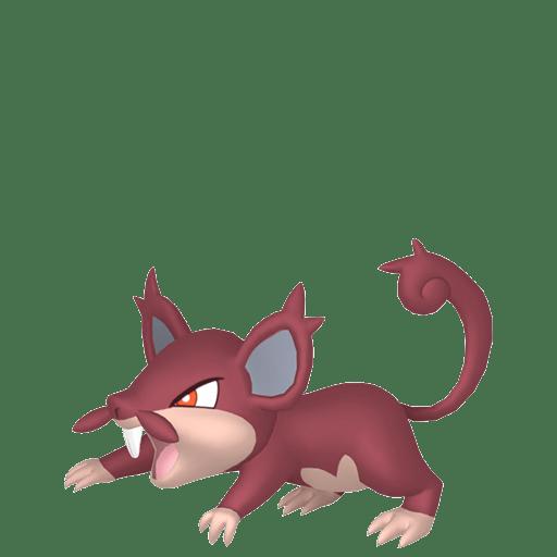 Rattata d'Alola Chromatique