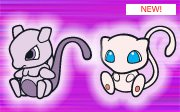club-d-mew-mewtwo-pokedoll
