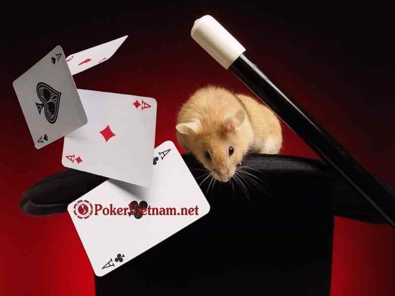 hướng dẫn đăng ký sòng bài poker trực tuyến w88, casino, casino online, casino trực tuyến, sòng bài, sòng bài online, sòng bài trực tuyến, phòng poker, phòng poker online, phòng poker trực tuyến, w88, m88, cách chơi poker, Texas Hold'em Poker Việt Nam, bai poker, bài Poker,c asino online, casino trực tuyến, sòng bài trực tuyến, chơi poker, chơi poker online, chơi poker trực tuyến, chơi poker tiền thật, cách chơi poker, giải thi đấu Poker, giải đấu poker, luật chơi Poker, poker chuyên nghiệp, poker doi thuong, poker là gì, poker online, poker tiền thật, poker trực tuyến, poker viet nam, poker vietnam, poker việt nam, poker đổi thưởng, sách poker, sòng bài online, sòng bài trực tuyến, sòng bài uy tín, đánh bài Poker, đánh bài poker online, đánh bài poker tiền thật, chơi bài poker, danh bai truc tuyen kiem tien that, danh bai online, đánh bài online, chơi bài trực tuyến, tiền thật, online poker, online casino, danh bai, game danh bai, danh bai online, tai game danh bai, đánh bài, game đánh bài, game danh bai online, đánh bài online, game bai online, choi bai online, game bài, choi danh bai, chơi bài, danh bai truc tuyen, nha cai uy tin, game đánh bài online, Poker Viet Nam, Poker Việt Nam, xì tố, chơi đánh bài xì tố, đánh bài xì tố, đánh bài, cá độ bóng đá, kèo bóng đá, keo bong da, ty le ca cuoc, bong da truc tuyen, cá cược bóng đá, bong da, bong da so, ket qua bong da, keo bong da, ty le bong da, bong da truc tuyen, ty le ca cuoc, bóng đá, ty so bong da, ty le keo, ti le bong da, ty so truc tuyen, video bong da, ti le ca cuoc, ti le keo, kq bong da, tylebongda, keo bong da hom nay, ty le ca cuoc bong da, bóng đá số, ty le bong da hom nay, keo bong da truc tuyen, Chơi đánh bài online ăn tiền thật, đánh bài online ăn tiền thật, đánh bài trực tuyến ăn tiền thật, đánh bài online đổi thưởng