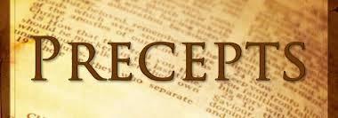 14 precepts